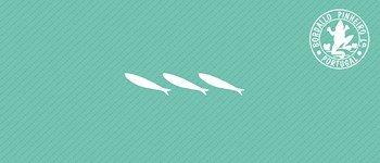 sardinhas bordallo pinheiro - santos populares