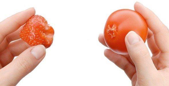 wmf descarocador morangos tomates