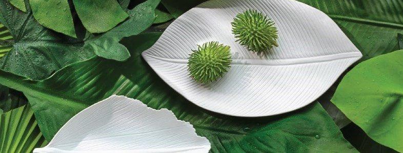tacas leafs