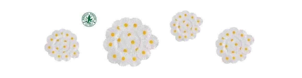 maria flor centro mesa