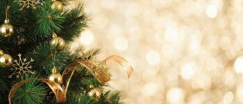 the fascinating history behind the christmas tree tradition