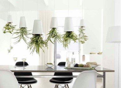 vasos plantas invertidos suspensos boskke