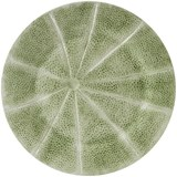 melon charger plate