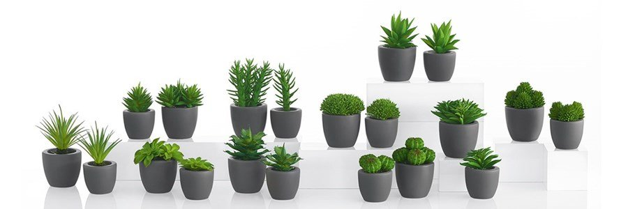 asa selection succulent pots with synthetic decoration plants