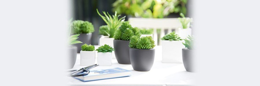 Asa selection succulent pots with synthetic decoration plants for Asas interhome decoration