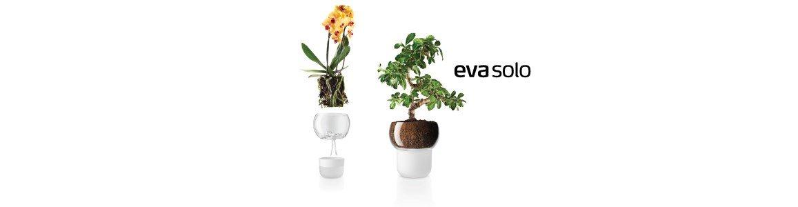 vaso orquideas em vidro fosco eva solo