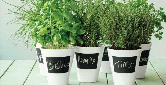 asa selection memo vase planter