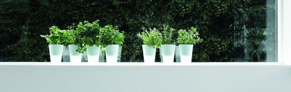eva solo herb pot vaso ceramica