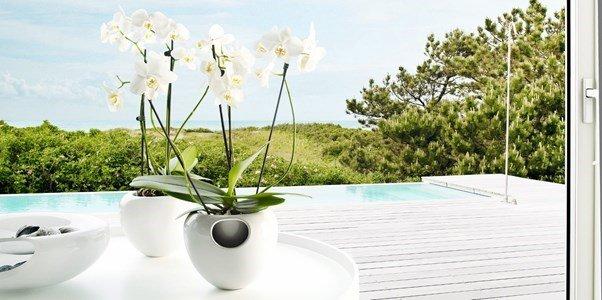 eva solo orchid pot