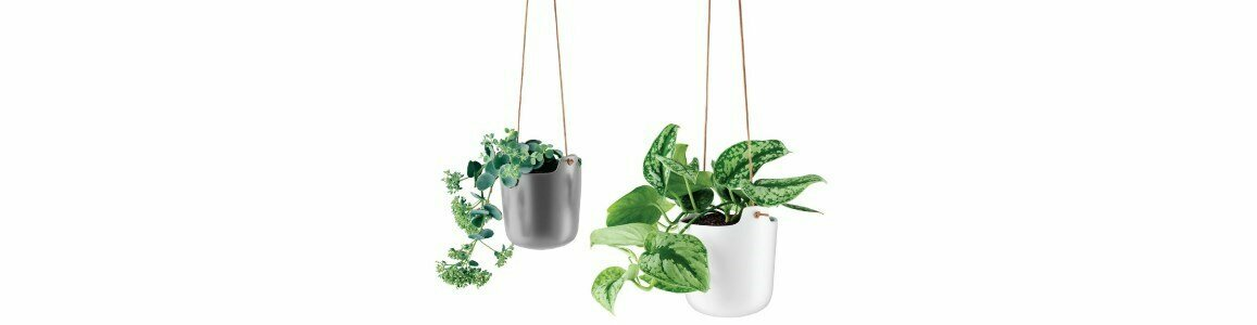 eva solo self watering pot hanging en