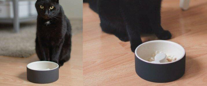 magisso happy pet bowls taca gatos en