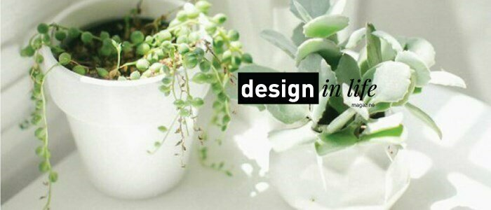 plantas magazine en