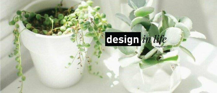 plantas magazine