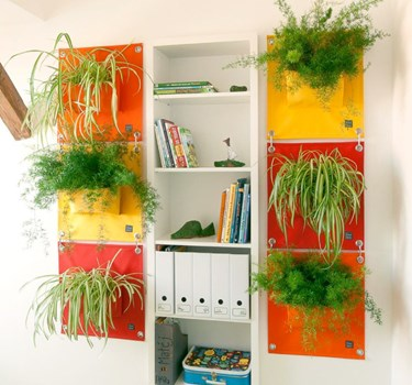 Blooming Walls